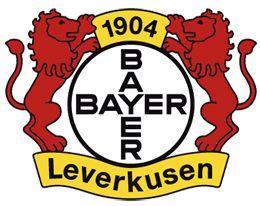 Bayer Leverkusen – Hoffenheim 2.12.11