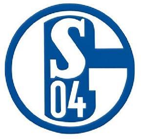 Schalke – Steaua Bucharest 1.12.11